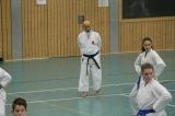 Neureut 18.11.2017 Lehrgang mit Hideo Ochi